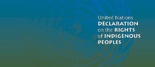 Indigenous Peoples and Cultural Freedoms: Implementing the UN Declaration on Indigenous Rights