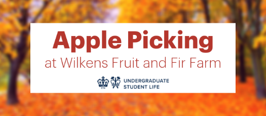 Apple Picking at Wilkens Fruit and Fir Farm