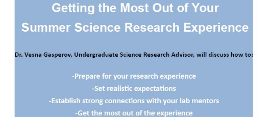 Getting the Most Out of Your Summer Science Research Experience